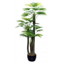 92421-17 / Palm Tree  / Höjd 280 cm