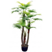 92421-18 / Palm Tree  / Höjd 210 cm