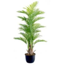 92463-106 / Palm Tree  / Höjd 170 cm