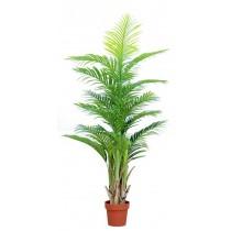 92463-118 / Palm Tree  / Höjd 165 cm