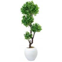 92836-4 / Lucky Tree  / Höjd 210 cm