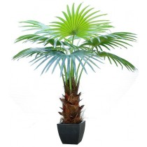 92421-15 / Palm Tree  / Höjd 160 cm