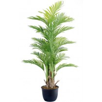92463-116 / Palm Tree  / Höjd 190 cm