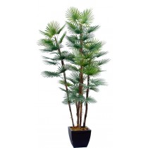92463-94 / Palm Tree  / Höjd 200 cm