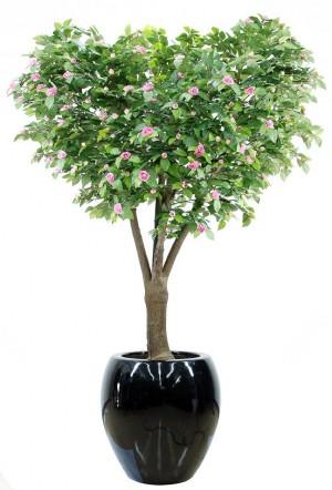 92828-4 / Camellia  / Höjd 280 cm