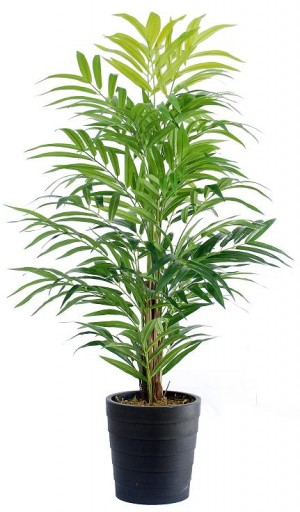 92463-108 / Palm Tree  / Höjd 110 cm